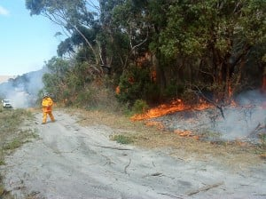 Hazard Reduction Burn
