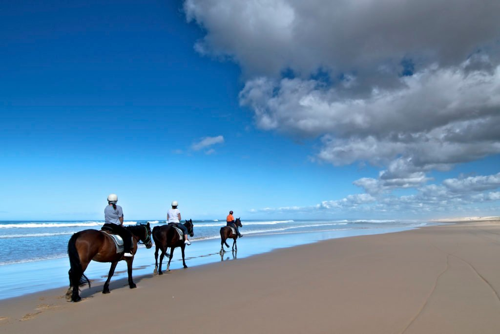 Horse riders on the beach, Worimi Conservation Lands
