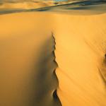 Sand Dunes, Stockton Bight